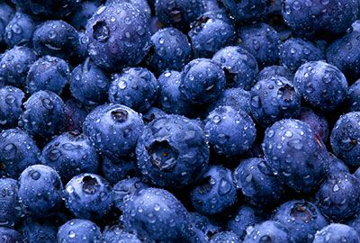 Blueberries - Beautiful Hair and Skin